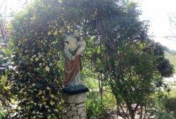 Con cuore di Padre - San Giuseppe
